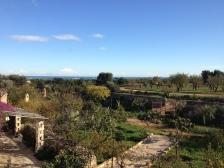 Masseria Montenapoleone, jardins
