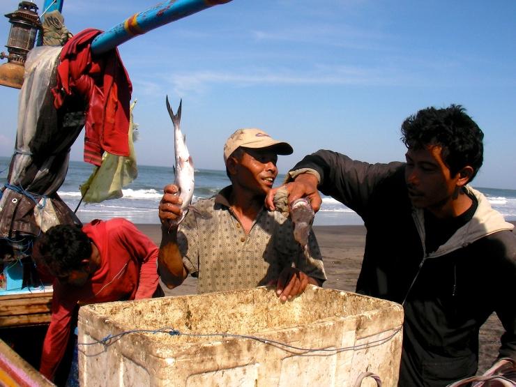 Pêcheur Bali