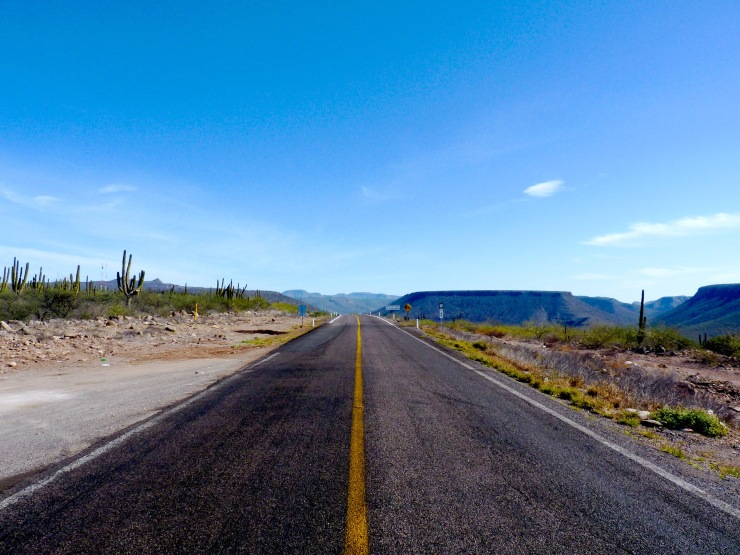 on the road of baja california