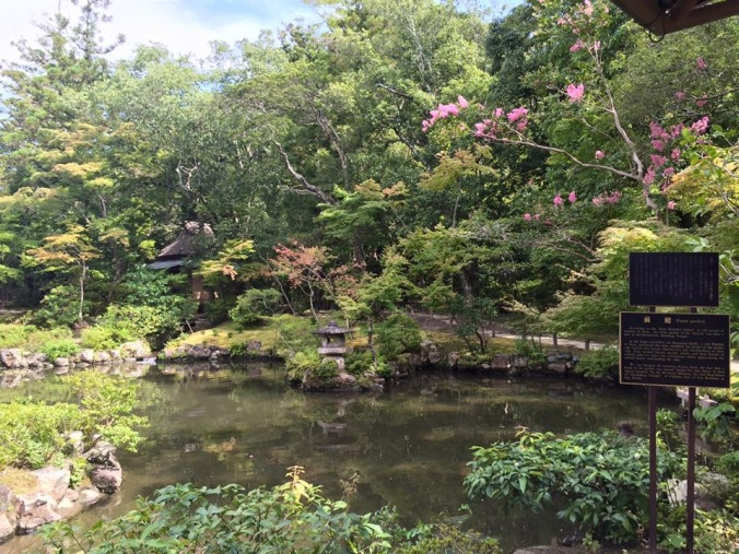 Japon DSMNOW